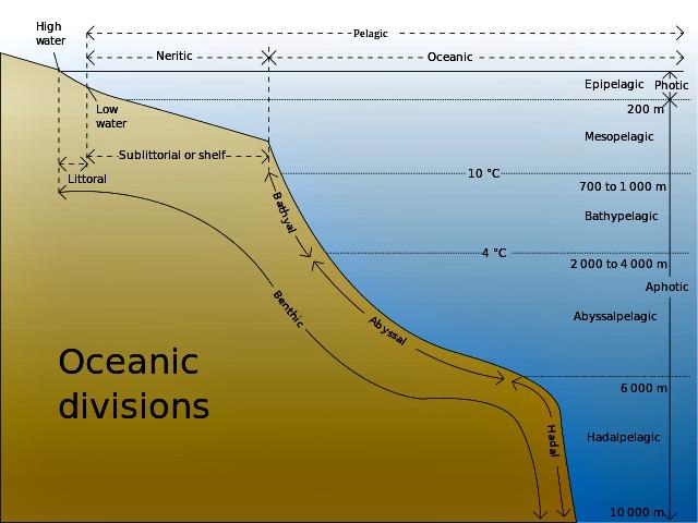 Oceanic_divisions