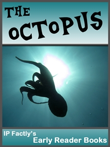 The Amazing Octopus!
