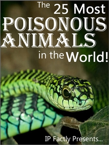 25 of the Most Poisonous Animals in the World!