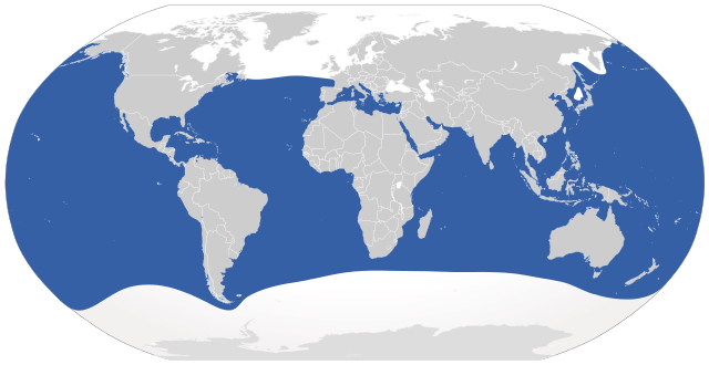 global_range_of_great_white_shark