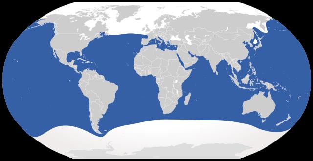 global_range_of_great_white_shark