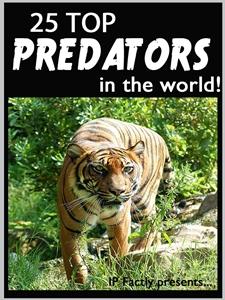 25 Top Predators in the World!
