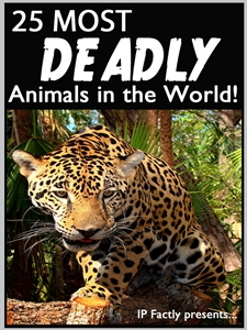25 Most Deadly Animals in the World!