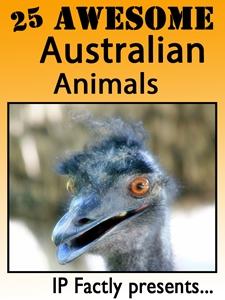 25 Awesome Australian Animals!