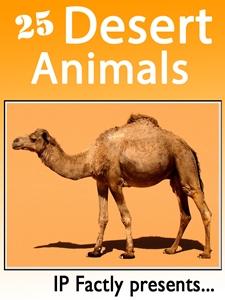 25 Desert Animals