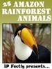 25 Amazon Rainforest Animals