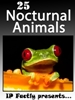 25 Nocturnal Animals