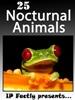 25 Nocturnal Animals
