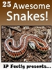 25 Awesome Snakes