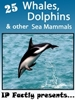 25 Whales, Dolphins and other Sea Mammals