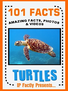 101 turtle facts