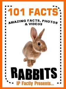 101 rabbit facts