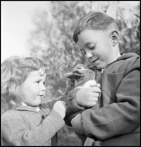 23-Two_young_refugees_from_Luxembourg_with_their_pet_rabbit_in_Surrey_during_1942._D11107