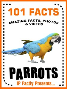 101 parrot facts