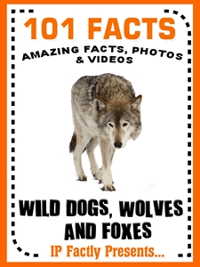 101 wild dogs wolves foxes facts