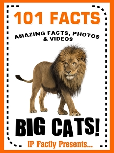 101 big cats book