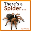 There's a Spider... (Animal Rhyming Books For Children)