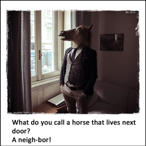 What do you call a horse that lives next door?