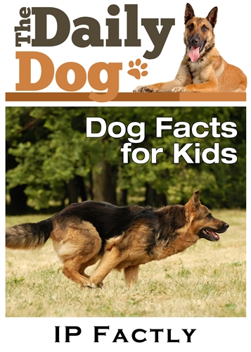 The Daily Dog - Facts