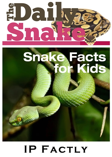 The Daily Snake - Snake Books