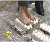 Walking on Eggs.