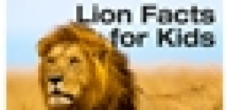 The Daily Lion - Facts for Kids