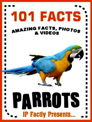 Top 10 Fun Facts About Parrots | Always Learning!