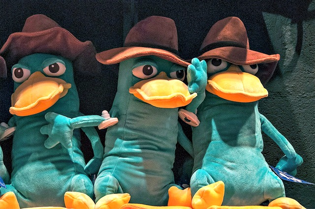 Where's Perry the Platypus