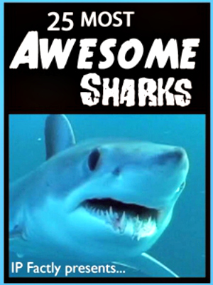 awesome shark