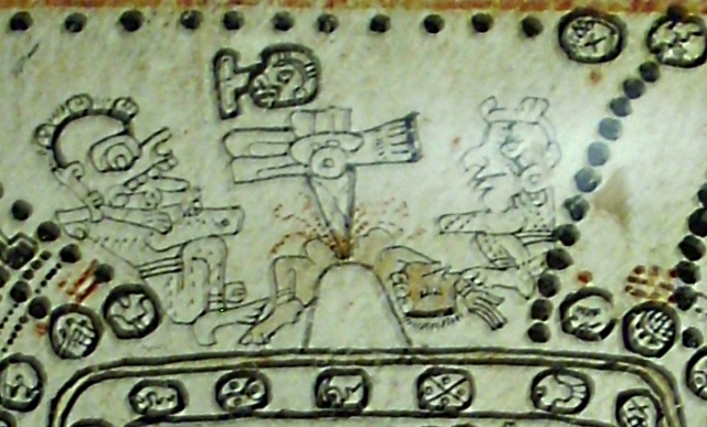 Madrid_Codex_sacrifice_scene_p76