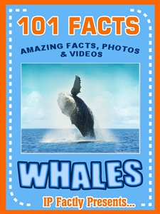101 whale facts book