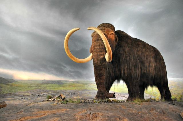 Woolly_mammoth_model