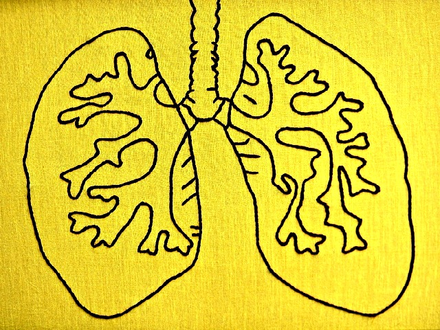 Large_Scale_Lungs_Framed_Anatomy_Embroidery