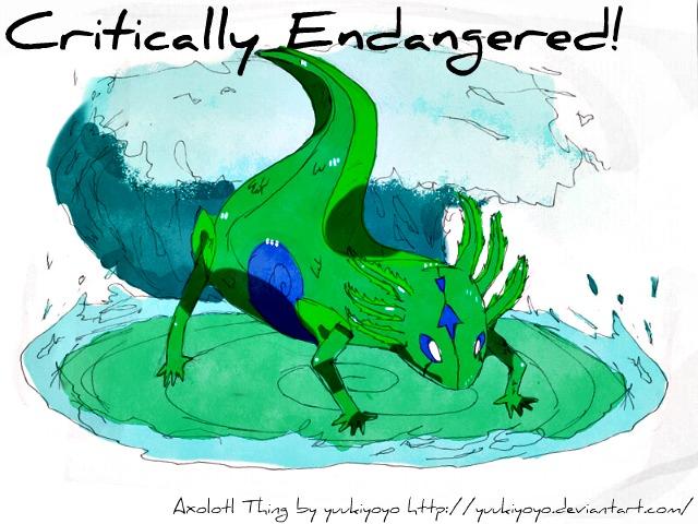 axolotl_Critically_Endangered