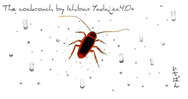 cockroach_respiratory