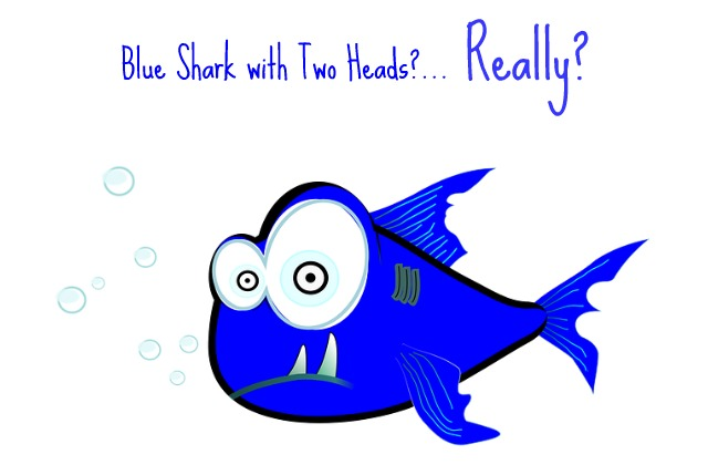 two-headed_blue_shark