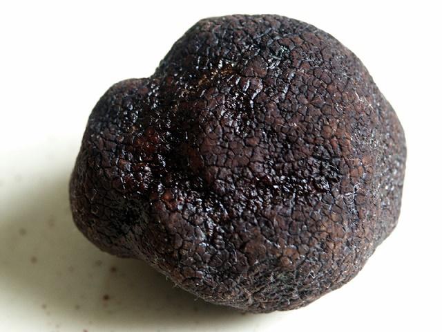 Black Périgord truffle