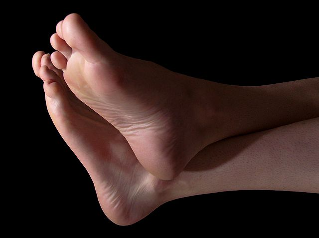 Link #128: 25% Of Bones In The Body Are In Your Feet