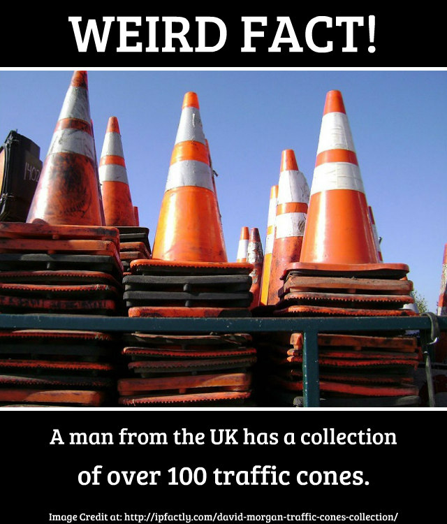 a man from the uk has a collection of over 100 traffic cones fun facts you need to know History Answers for Homework History Answers for Homework