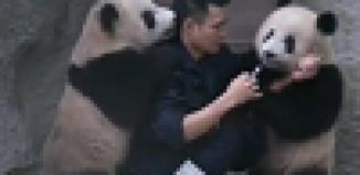Baby Pandas Refuse Their Medicine