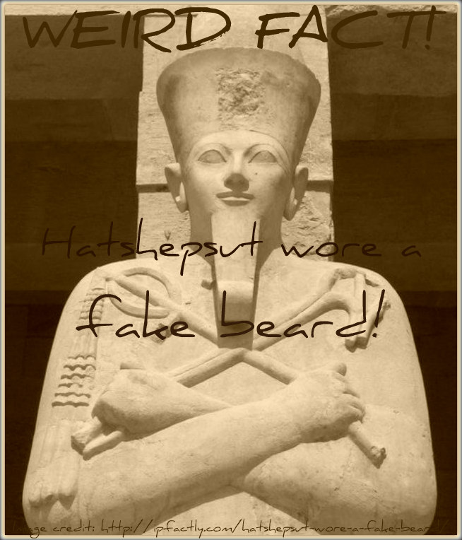 Hatshepsut wore a fake beard