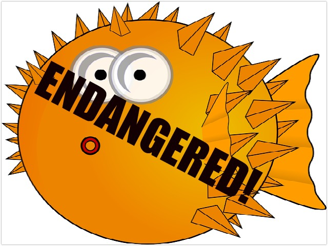 endangered_puffer_art