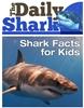 The-Daily-Shark-100