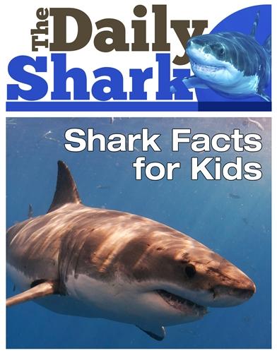 The Daily Shark - Shark Facts
