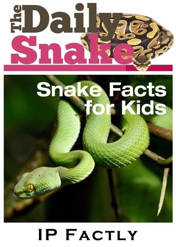 The Daily Snake - Snake Books