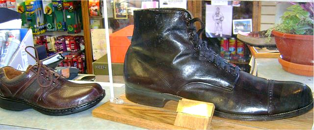 Wadlow_shoe_compared