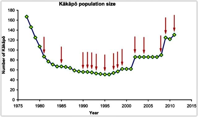 Kakapo-population-size