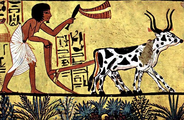 An egyptian plowman