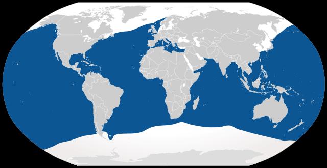 Range_of_blue_shark_(Prionace glauca)