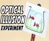 Optical Illusion Experiment.